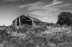 Barn, Ennis, TX.