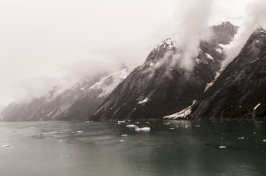Tracy Arm Fjord Coastline
